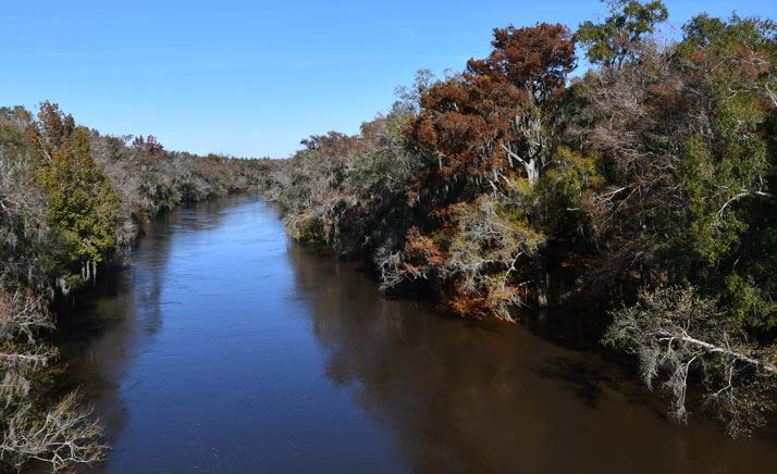 High water levels at the Alapaha river